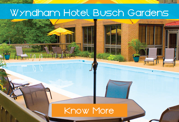 wyndham-hotel-busch-gardens-display